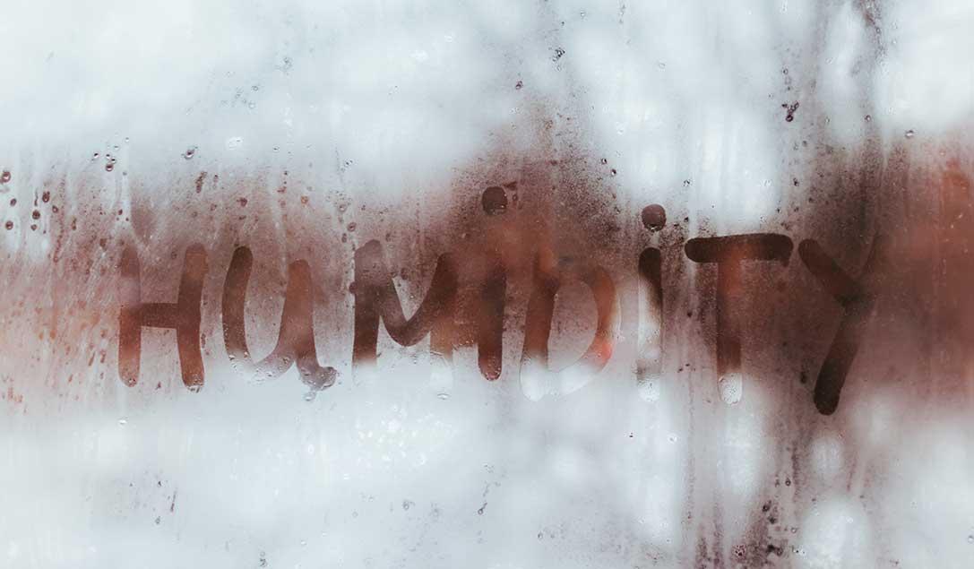 umidita-in-casa