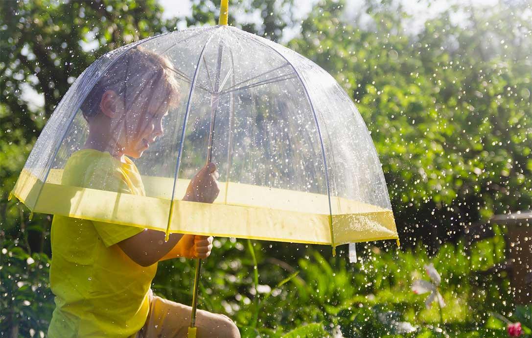 come-proteggere-le-piante-dalla-pioggia-consigli